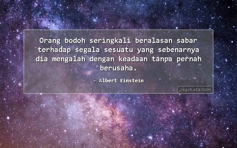 Albert Einstein - Orang bodoh seringkali beralasan sabar terhadap segala sesuatu yang sebenarnya dia mengalah dengan keadaan tanpa pernah berusaha.