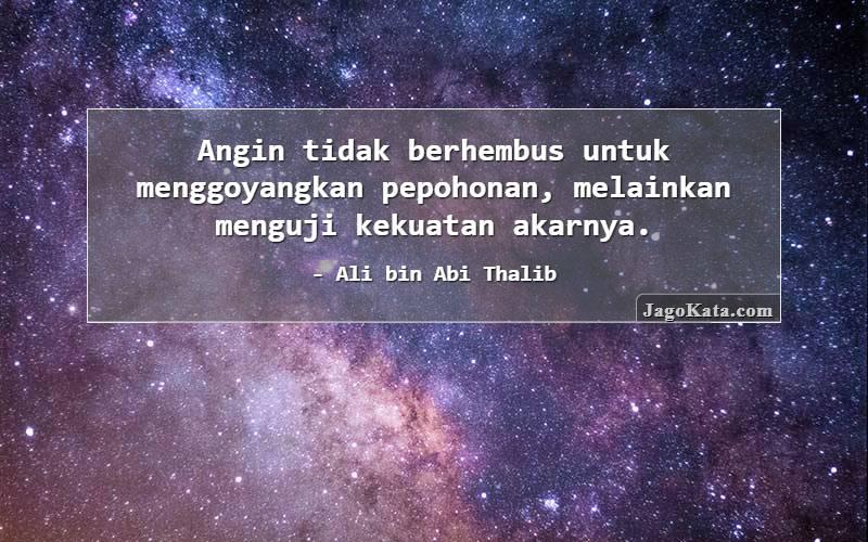 Ali bin Abi Thalib - Angin tidak berhembus untuk menggoyangkan pepohonan, melainkan menguji kekuatan akarnya.