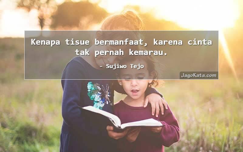 Sujiwo Tejo - Kenapa tisue bermanfaat, karena cinta tak pernah kemarau.