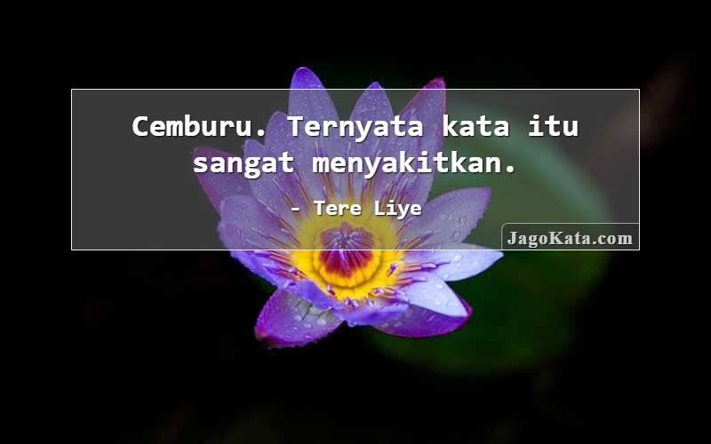 Tere Liye - Cemburu. Ternyata kata itu sangat menyakitkan.