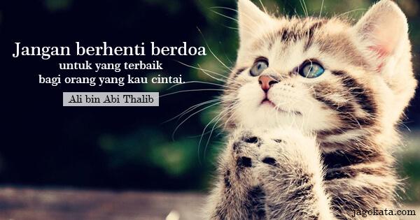 Jangan berhenti berdoa untuk yang terbaik bagi orang yang kau cintai.