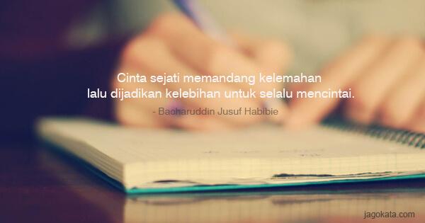 Bacharuddin Jusuf Habibie Cinta Sejati Memandang Kelemahan