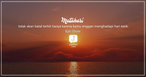 186 Kata Kata Matahari Jagokata